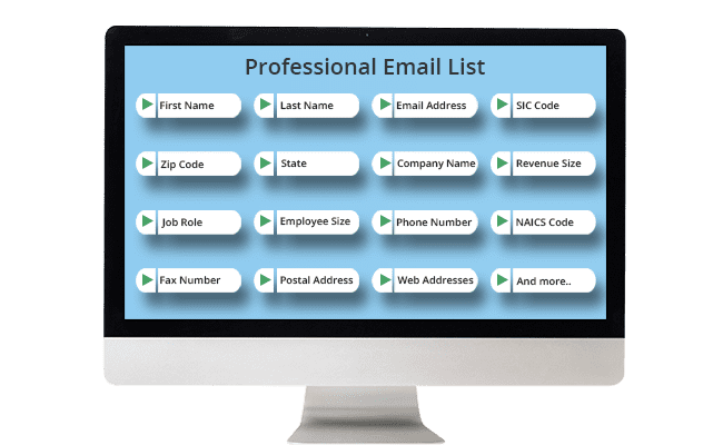 Professionals Email List